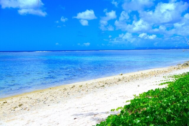 グワムの海の画像