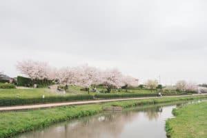 花見の名所