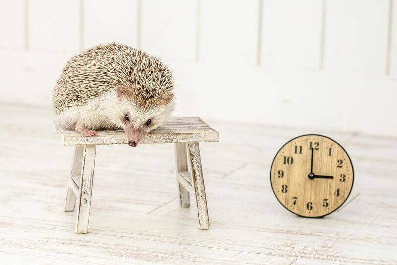 時間は何もしなくても過ぎて行く